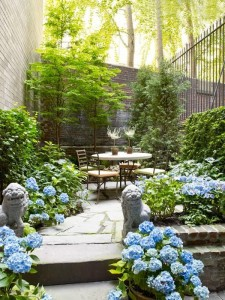zahrady ve městě